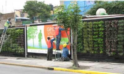 Jardines verticales monterrey que se esta haciendo en for Jardines verticales mexico