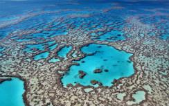 gran-barrera-de-coral