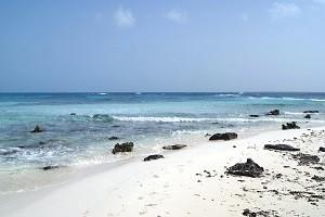 costa-mexicana-2